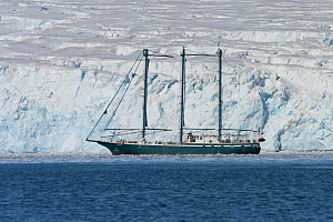 Sedna IV yacht, a 51-meter, three masted, steel-hulled sailing schooner, anchored in Arthur Bay at Palmer Station, Antarctica. January.  -  Charlie  Summers