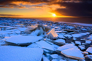 Broken ice covered in snow at sunset, on the shore of Lake Vortsjarv, gathered to shore by extreme winds, Estonia. December 2014.  -  Sven  Zacek