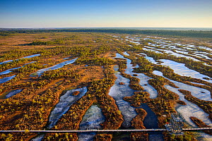 Aerial view of spring over Mannikjarve bog hiking trail in Endla Nature Reserve, Jogevamaa County, Estonia, March 2015. Taken with drone camera. - Sven  Zacek
