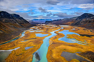 Autumn trees on the Rapa River Delta, aerial view, Rapadalen Sarek National Park, Sweden, September 2009. - Sven  Zacek