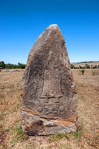 Megaliths with engraved figures (sword), megalithic stelae field, Tiya archaeological site UNESCO World Heritage Site, Soddo Region, Ethiopia. February 2009  -  Constantinos Petrinos