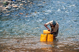 Oromo tribe girl filling her yellow water containers from the Web River (Weyib River) in Islam�s sacred valley - Sof Omar. Bale Province, Oromia Region, Ethiopia, Africa, March 2009  -  Constantinos Petrinos