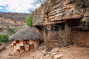 Small hut of the Oromo tribe with decorated walls, thatched roof and an animal enclosure with fence made of tree branches. Bale Province, Oromia Region, Ethiopia, Africa, March 2009. - Constantinos Petrinos