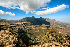 Expansive view of Simien Mountains National Park, Amhara Region, Ethiopia, Africa, March 2009. - Constantinos Petrinos