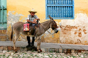 Old Cuban man standing by his domestic donkey and smoking a Cuban cigar in a typical cobblestone street with a house in pastel colors in the background, Trinidad, Sancti Spiritus Province, Cuba, Carib... - Constantinos Petrinos