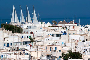 White houses in Mykonos Town with luxury ship Wind Star in the background. Mykonos Island, Cyclades, Aegean Sea, Mediterranean, Greece, August 2007  -  Constantinos Petrinos