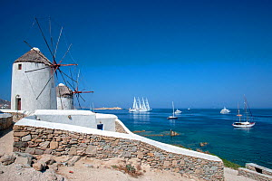 Traditional windmills, and luxury yachts, including the luxury ship Wind Star, which is a sleek, 4-masted sailing yacht. Mykonos Island, Cyclades, Aegean Sea, Mediterranean, Greece, August 2007  -  Constantinos Petrinos