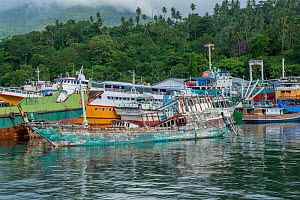 Old fishing boat abandoned and sinking among a cluster of boats confiscated by the Indonesian Port Police (mainly for illegal fishing without a proper licence). Port Police station, Bitung. Lembeh Str... - Constantinos Petrinos
