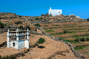Tinos Dovecotes. with Greek Orthodox Church in background. The island of Tinos is famous for its many intricately designed dovecotes. Tinos island, Cycladic islands, Aegean Sea, Greece, Mediterranean,... - Constantinos Petrinos
