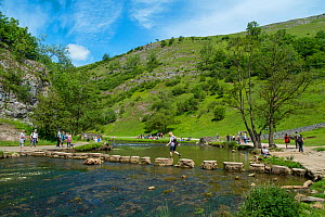 Tourists walking across the stepping stones, Dovedale, Peak District National Park, Derbyshire, England, UK, July 2015.  -  Gary  K. Smith