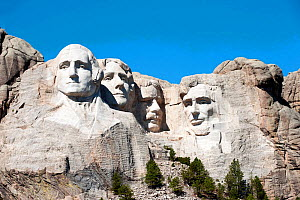 Mount Rushmore, with the iconic carvings of presidents Washington, Jefferson, Lincoln and Thoedore Roosevelt, Rushmore National Monument, South Dakota, USA. September 2013.  -  Steven David Miller
