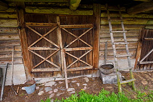 Wooden doorway to agricultural building in Musteika Village, Lithuania, May 2015.  -  Staffan Widstrand