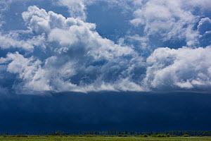Spring rainstorm rolling in over the Nemunas River Delta, Lithuania, May 2015. - Staffan Widstrand