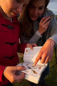 Rita Norvaisaite, from the Baltic Environmental Forum, helping a young girl identify bird, during a bird festival in the Nemunas River Delta, Lithuania, May 2015. - Staffan Widstrand