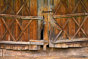 Wooden doorway in Musteika Village, on the border of the Cepkeliai reserve and the Dzukija National Park, Lithuania, May 2015.  -  Staffan Widstrand