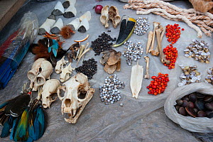 Traditional talismans, and medicines, for sale in Yurimaguas market, Amazon, Peru. November 2006. - Cyril Ruoso