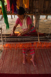 Woman weaving, Assam, North East India, November 2014.  -  Pete Oxford