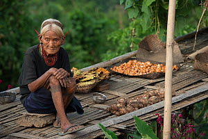 Elderly Konyak Naga woman in traditional dress. Mon district. Nagaland,  North East India, October 2014. - Pete Oxford