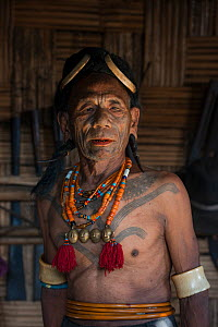 Konyak Naga tattooed chief head hunter with traditional ornamentation of Elephant ivory arm bands and Hornbill headdress. Only someone who has killed and taken a human head can be tattooed in this man...  -  Pete Oxford