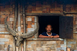Konyak Naga Man looking out of window of house - with buffalo skull attached to the wall, Mon district.Nagaland,  North East India, October 2014. - Pete Oxford