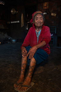 Portrait of elderly Ao Naga woman with leg tattoos. Ao Naga headhunting Tribe. Mokokchung district. Nagaland, North East India, October 2014.  -  Pete Oxford