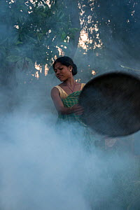Mising tribe woman using smoke to drive away mosquitoes away from cattle, Majuli Island, Brahmaputra River, Assam,  North East India, October 2014. - Pete Oxford