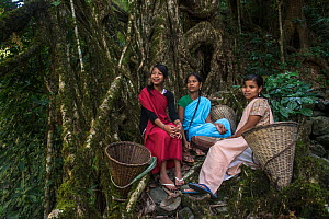 Young Khasi women with baskets resting next root bridge formed of Rubber fig tree (Ficus elastica) Nongriat, Khasi Hills. Meghalaya, North East India.  -  Pete Oxford