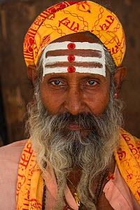 Portrait of a Holy Man / Sadhu with Bindi, Bateshwar Temple, Uttar Pradesh, India, October 2014. - Pete Oxford