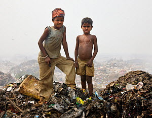 Indian rag picker boys standing on rubbish heap in landfill site, Guwahati, Assam, India, March 2009.  -  Tony Heald