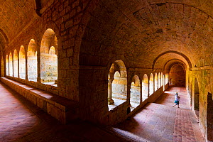 Tourist in Le Thoronet Abbey / L'Abbaye du Thoronet, Var Department, Cistercian Architecture, Provence, France, July 2015. - Juan  Carlos Munoz