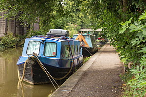 Shropshire Union canal , previously called the Chester Canal, with boats moored along the banks. Chester, Cheshire, UK, July 2014. All non-editorial uses must be cleared individually. - Norma  Brazendale