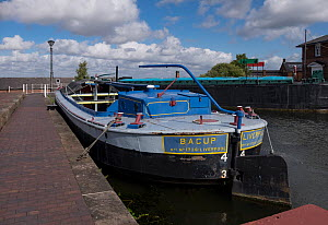 Canal boats undergoing restoration at permanent mooring at Ellesmere Port Boat museum. Cheshire, UK, September 2015. - Norma  Brazendale