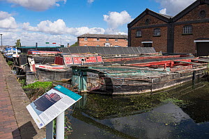 Canal boats awaiting restoration in permanent mooring at Ellesmere Port Boat museum. Cheshire, UK, September 2015. - Norma  Brazendale