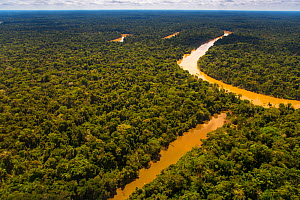Aerial view of  Yavari-Mirin River and oxbow lake and Amazon Rainforest, Peru, July. - Mark  Bowler