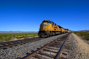 Freight train driving along Union Pacific Railroad, Mohave National Preserve, California, October 2013.  -  Daniel  Heuclin
