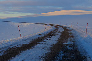 Mountain tundra road, with snow marking poles, so that the snow plough knows where the road is, Batsfjord, Varanger Peninsula, Norway, March 2012.  -  Staffan Widstrand