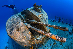 "Diver swimming over the stern gun turret of the 330ft long Russian frigate 356, the ""MV Keith Tibbetts"". The ship was built in 1984 and sunk in 1996. Buccaneer Reef, Cayman Brac, Cayman Islands. Carib...  -  Alex Mustard"