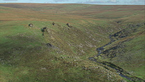 Aerial view tracking over the Tavy Cleave, Dartmoor National Park, Devon, England, UK, October 2015. - Andrew Cooper