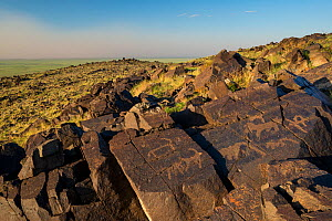 Animal petroglyphs between 5,000-15,000 years old years ago,  Khavtsgait Petroglyph Mountain, Gobi desert, Govi Gurvan Saikhan National Park, South Mongolia. June 2015.  -  Inaki  Relanzon