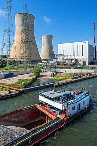 Cooling towers, Tihange Nuclear Power Station at Huy / Hoei, Liege / Luik, Belgium, August 2015  -  Philippe Clement