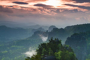 Morning mist over Sachsische Schweiz / Saxon Switzerland National Park, Germany, May 2010. - Dr.  Axel Gebauer