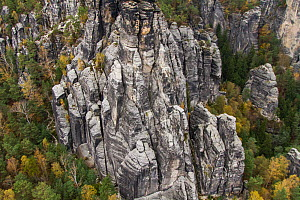 Sandstone formation, Sachsische Schweiz / Saxon Switzerland National Park, Germany, May. - Dr.  Axel Gebauer