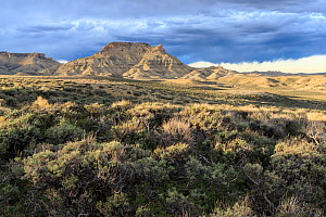 Sage lands and Oregon Buttes, Red Desert, Sweetwater County, Wyoming, USA. May 2013. - Gerrit  Vyn