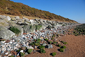 Rocks and boulders placed at bottom of mud and clay cliff to prevent erosion by sea at high tide, Wirral Coast, River Dee Estuary, England, UK. March 2014.  -  Alan  Williams