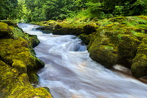 The Strid, River Wharfe, slow shutter speed showing movement of the water, Bolton Abbey Estate, Wharfedale, North Yorkshire, August 2015 - Ben  Hall