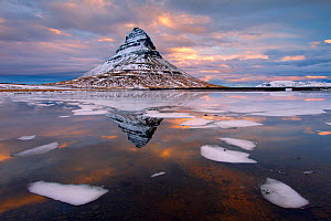Kirkjufell mountain at dawn with ice in foreground, Snaefellsnes peninsula, Iceland, January 2014  -  Ben  Hall