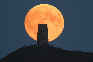 Super moon rising behind Glastonbury Tor with people watching, Somerset, England, UK, 27th September 2015.  -  Peter  Lewis