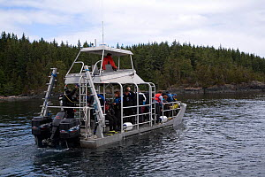 Diving boat of the Nautilus Explorer, luxury liveaboard boat, Vancouver Island, British Columbia, Canada, Pacific Ocean - Franco  Banfi