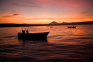 Mexican fisherman boat at dusk, fishing Humboldt squid (Dosidicus gigas) , at night off Santa Rosalia, Sea of Cortez, Baja California, Mexico, East Pacific Ocean. - Franco  Banfi
