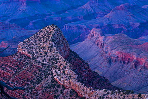Ridge in the Grand Canyon, Grand Canyon National Park, Arizona, USA, February 2015. - Juan  Carlos Munoz